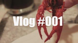 Vlog #001 Mein erster Vlog - Hochzeit und Prüfung
