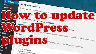 How to UPDATE WordPress Plugins and Themes without BREAKING your site