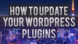 How To Update Your WordPress Plugins