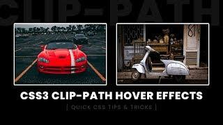 CSS Clip-path Image Hover Effects   Html CSS