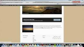 How To Make a Website with WordPress - CUSTOM!
